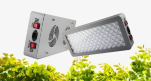 LED Grow Lights - Grow Plants Indoors - Grow Indoors Products, South Africa